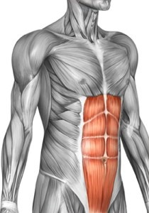 How does someone get 12 pack abs? - Quora
