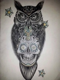 What Does An Owl With A Skull Symbolize Quora