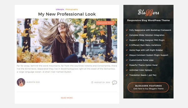 What are the best WordPress themes for a blog offering programming ...