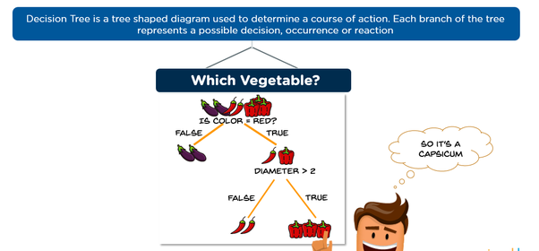 What are the advantages of using a decision tree for classification the one very important advantage of decision tree is that it can be used for both classification and regression problem ccuart Image collections