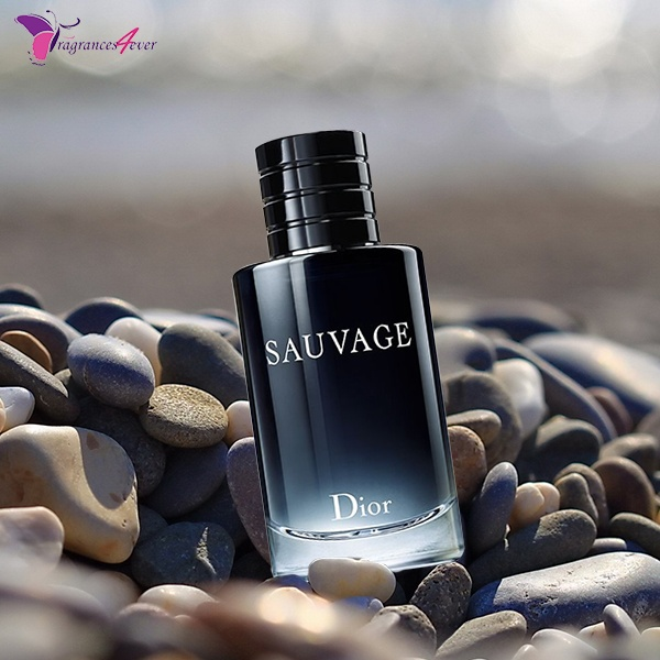 Which are the best men's colognes to attract women? - Quora
