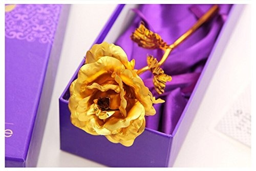 Make Her Feel The Golden Glow And Nature Of You By Presenting This Best Birthday Gift For Sister A Box Has An Artificial Gold Rose In It Below