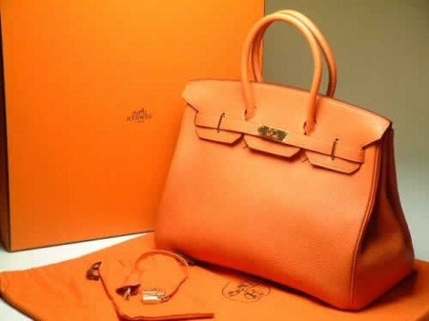 Is One Of The Expensive Handbags Hermes Brand Company Best Known For Its Well Crafted Made Crocodile Leather And Diamonds