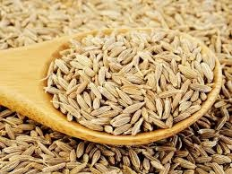 In Telugu, what are cumin seeds called? - Quora