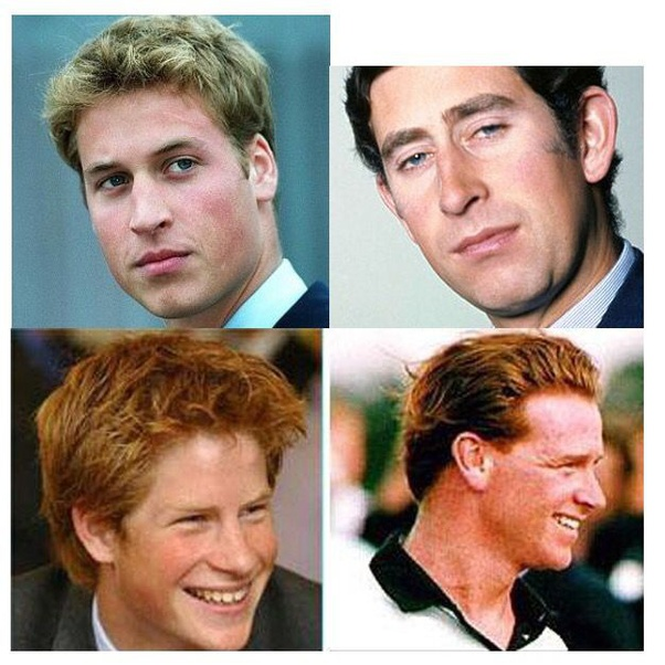 The Best Prince Harry Father Rumours