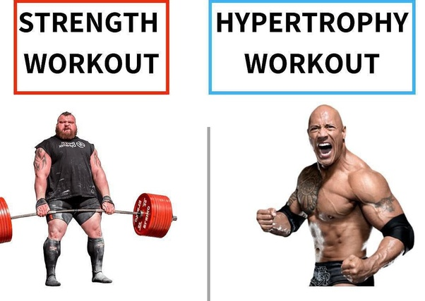 What is the difference between strength training and hypertrophy training?  - Quora