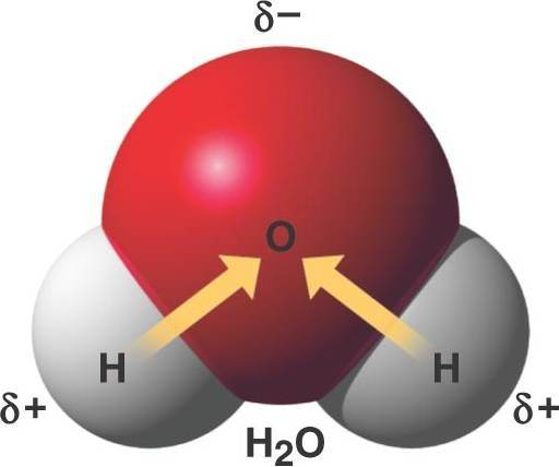 How Are Polar Covalent Bonds Formed Quora