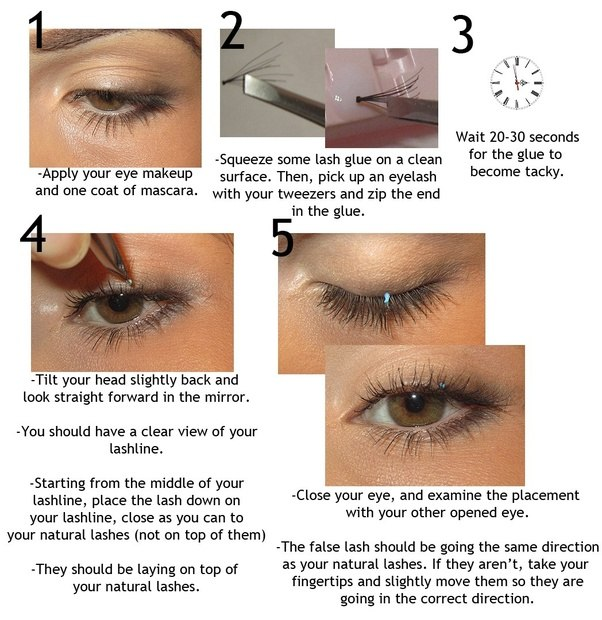 How To Apply False Eyelashes Quora