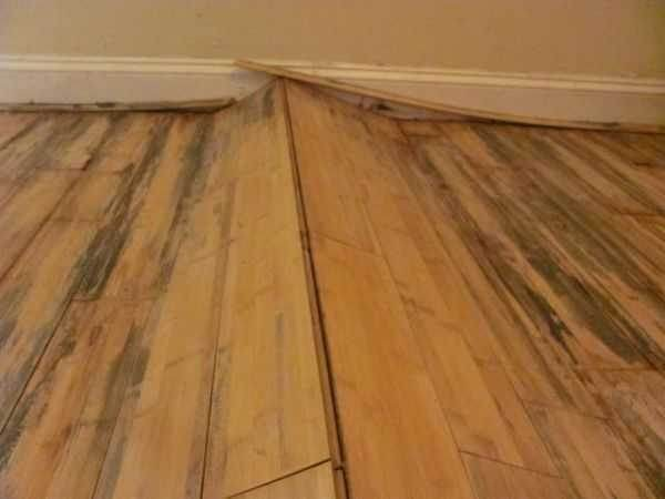 Do Hardwood Floors Need Humidity Why Or Why Not Quora