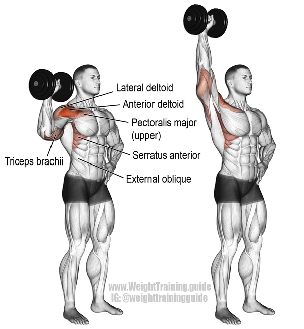 My Left Shoulder Is Much Weaker Than My Right Shoulder Due To Which