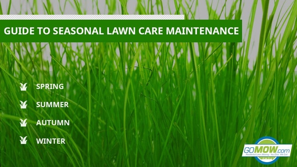 Lawn Mowing Texas - Magazine cover