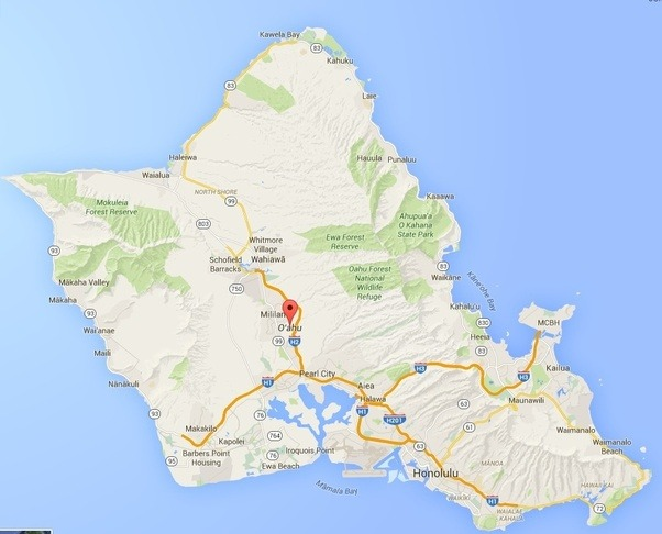 What should you look for when taking a scenic drive around Oahu