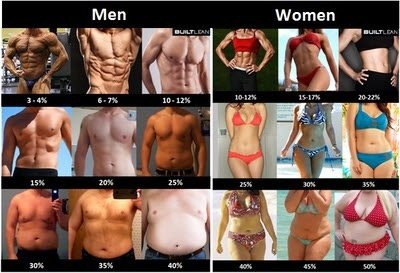 How to burn gut fat fast picture 4