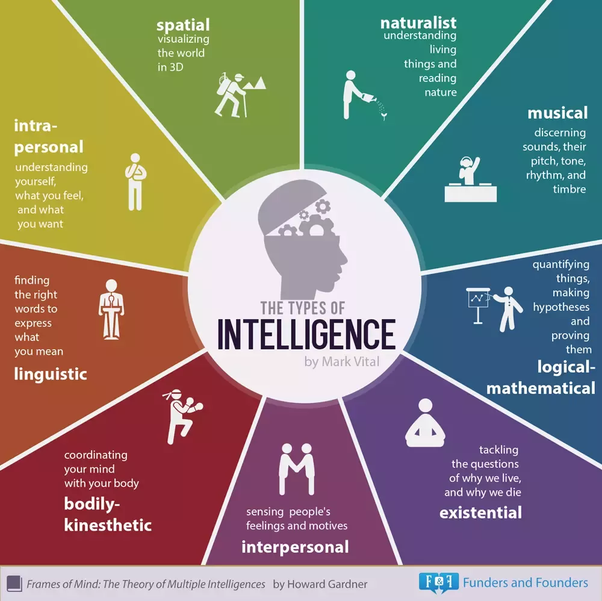 What is a good list of animals ordered by intelligence? - Quora