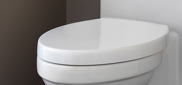 Fabulous Is Putting The Toilet Seat Down About Courtesy Or Is It Lamtechconsult Wood Chair Design Ideas Lamtechconsultcom
