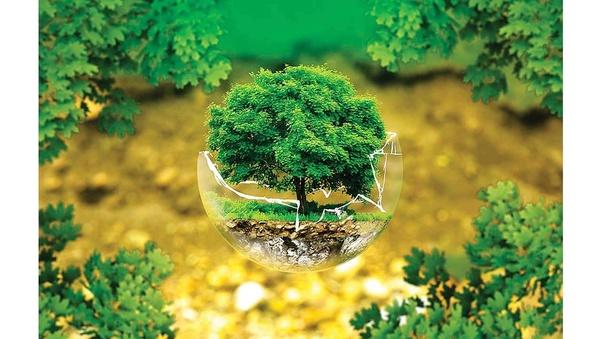 How is it to study sustainable development? - Quora