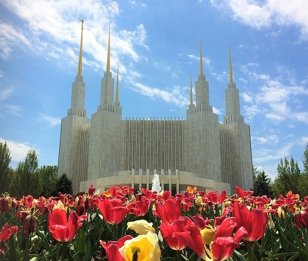 Mormon marrying non mormon