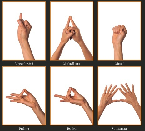 what is the difference between asana and mudra  quora