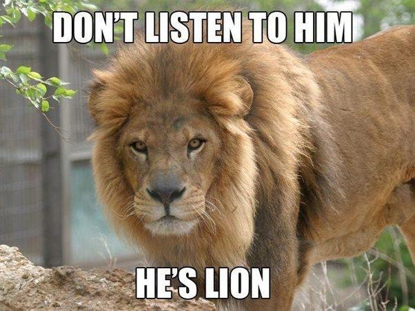 Animal jokes - photo#52