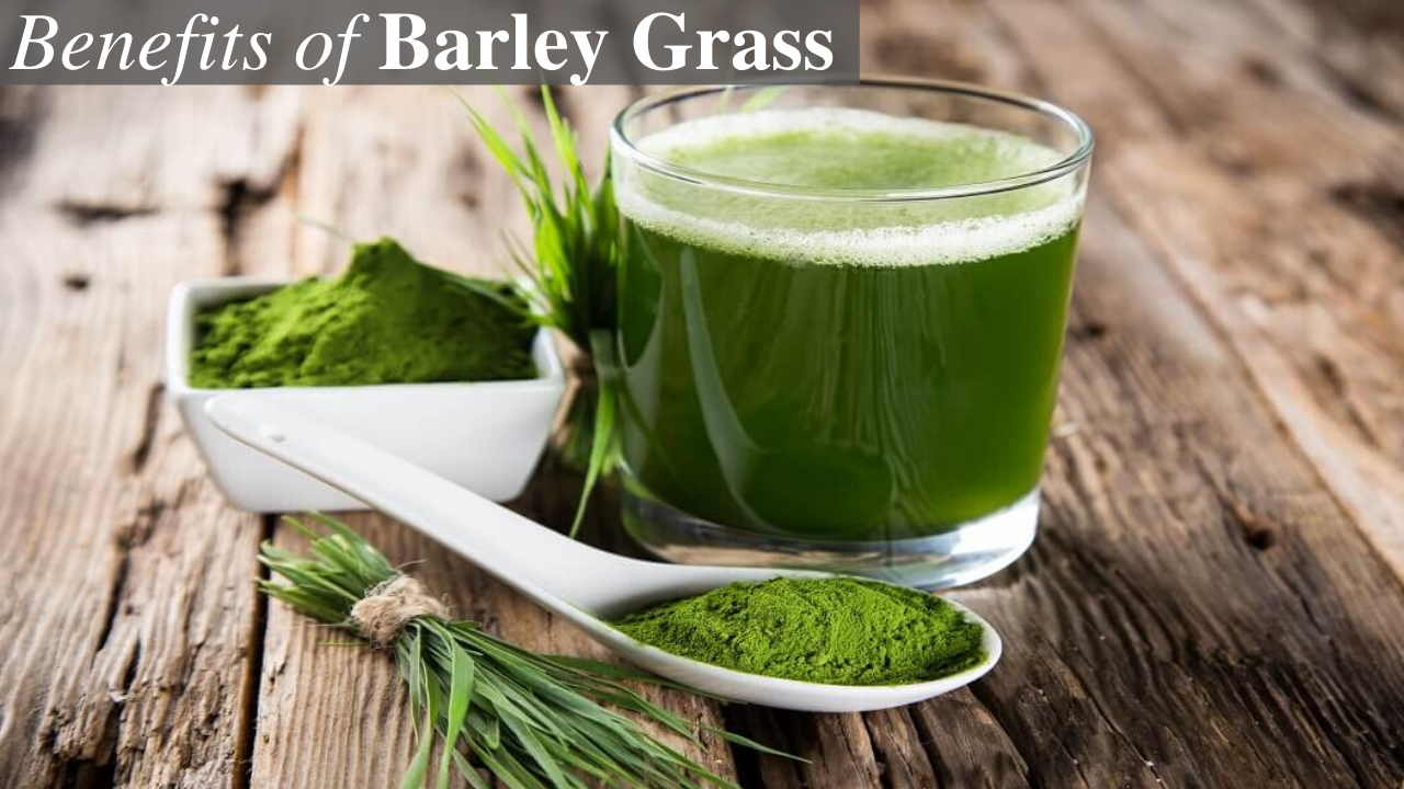 what are the health benefits of barley grass? - quora