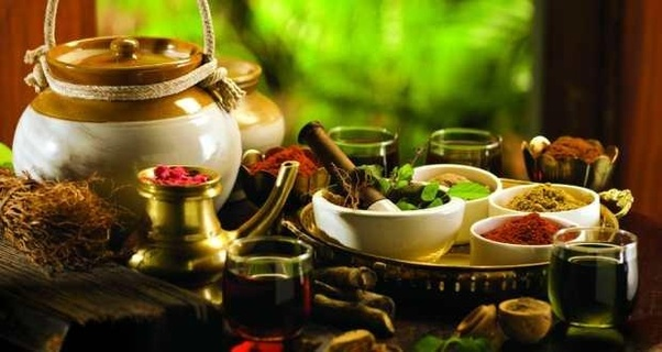 Why is Kerala good in Ayurveda? - Quora