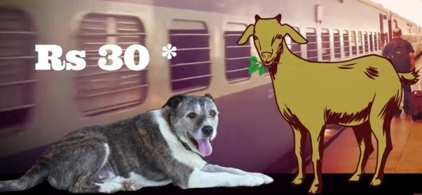 Can we carry pets on Indian trains? - Quora