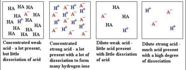 what is a short definition of a dilute acid