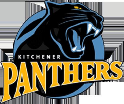 logos sports team panthers panther animal sport kitchener baseball name league designs teams hockey minor primary circle coolest sportslogos yellow