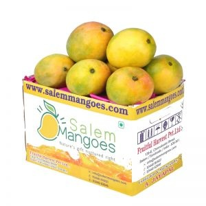 Salem Mangoes