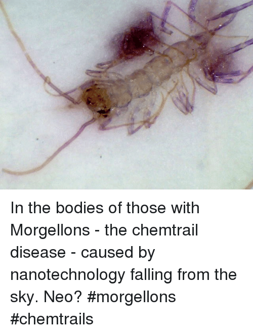 How to get infected with Morgellons disease - Quora