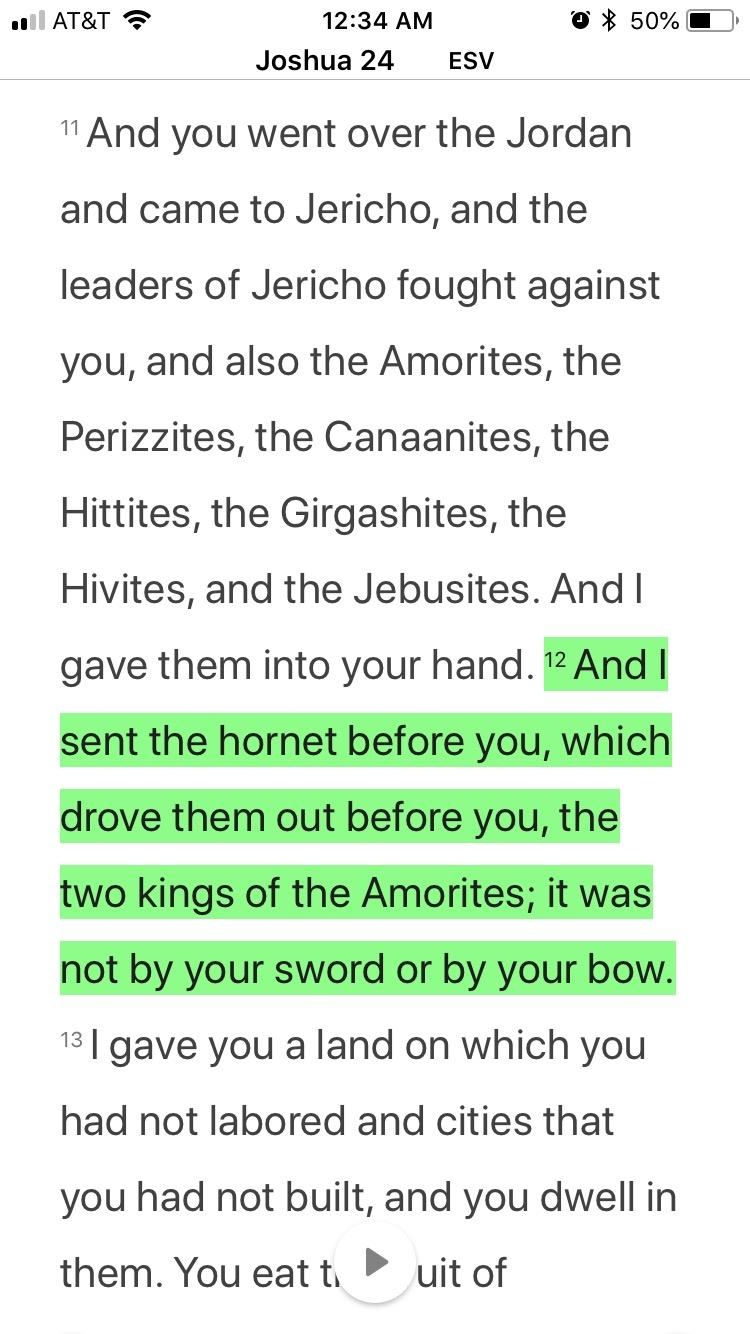Why did YHWH order the destruction of the Canaanites? Why
