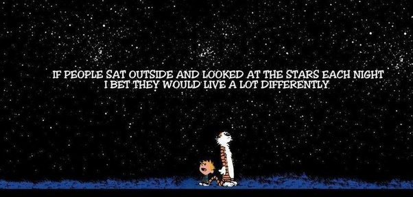 What Are The Most Profound Quotes From The Calvin And Hobbes Series