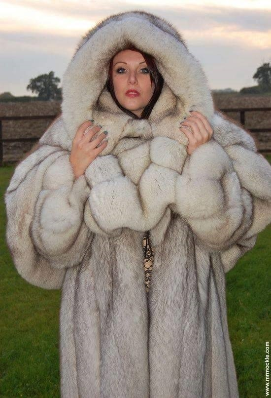 Exwives in furs 4