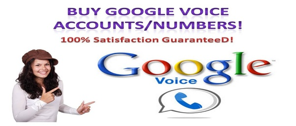 Image result for buy google voice numbers