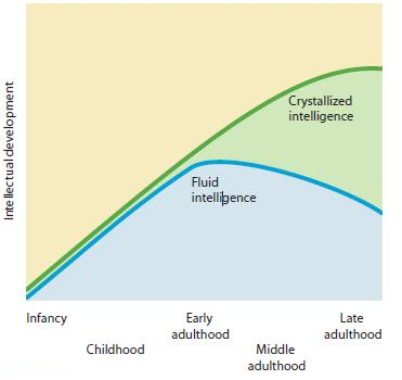fluid and crystallized intelligence And crystallized intelligence: toward an integrative model, journal of research in personality (2012), doi: 101016/ jjrp201201002 this is a pdf file of an unedited manuscript that has been accepted for publication.