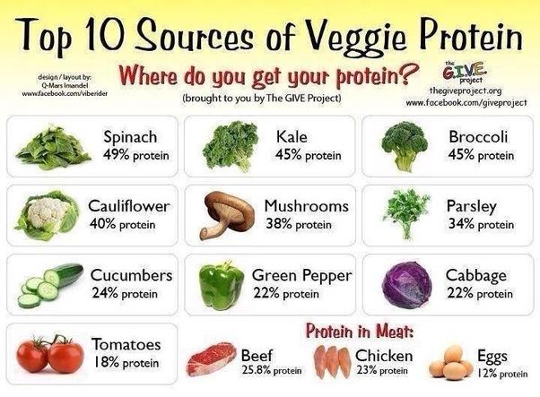 complete protien on vegan diet