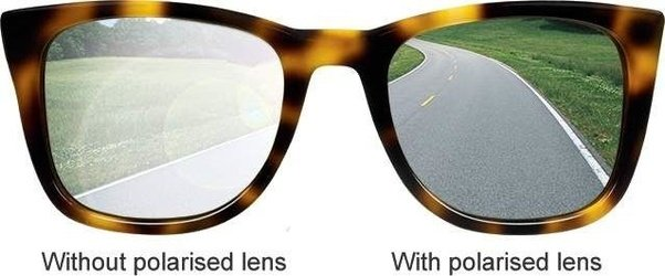 Check If Glasses Are Polarised