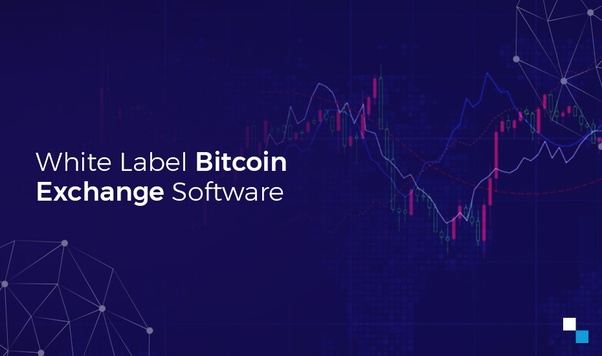 best cryptocurrency exchange business account