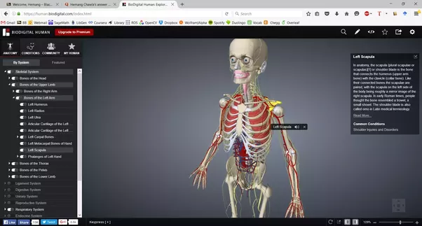 What are the best websites to learn human anatomy? - Quora