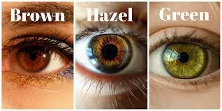 Eye color hazel true Hazel Eyes