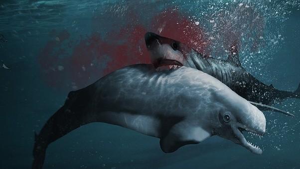 Megalodon vs loch ness