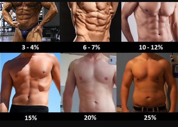 Here Is A Rough Estimate Of Body Fat Percentage And Ab Visibility