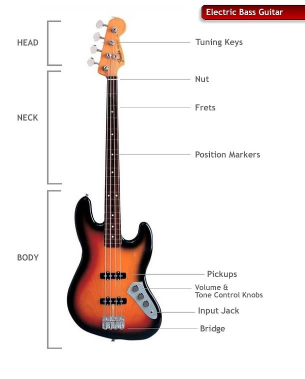 bass guitar string diagram i just picked up a bass guitar and i have no regular guitar  i just picked up a bass guitar and i
