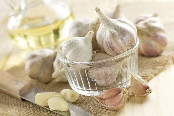 Is eating garlic bad for vegetarians? - Quora