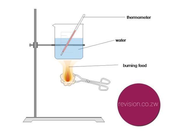 food tube diagram for a calorimeter experiment  what type or kind of foods are you  for a calorimeter experiment  what type