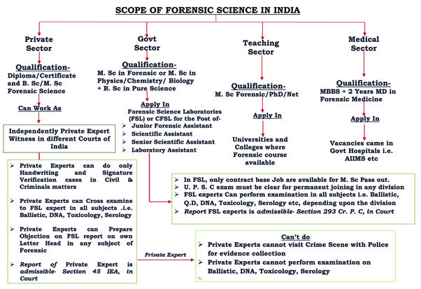 Does Forensic Science Have A Scope In India As A Career  Quora