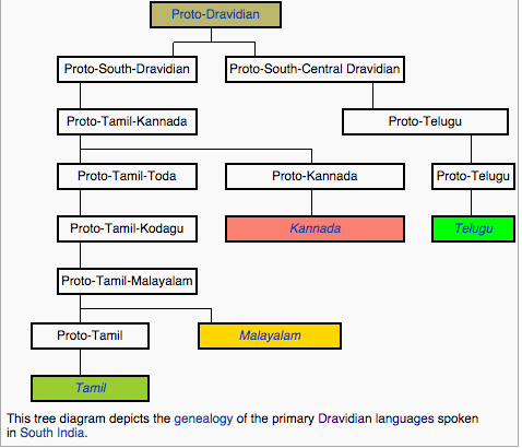 Why are the 4 south Indian languages of Telugu, Kannada, Tamil, and