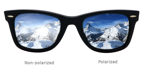 How Do Polarized And Non-polarized Sunglasses Differ