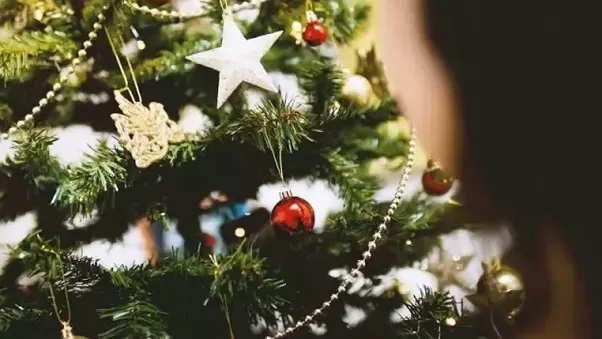 however have you ever wondered about the origin of christmas tree how it came about - Origin Of Christmas Tree