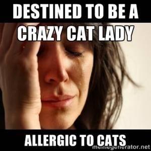 main qimg 3ebf7e9dbd371617a1122baccee23a9e c can cat allergies cause sore throat? quora